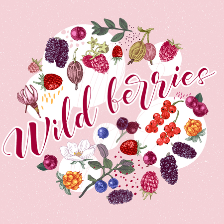 Circle composition with different types of hand drawn berries and type design - wild berries. Vector illustration