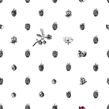 Patrón transparente blanco y negro con bayas dibujadas a mano. Ilustración vectorial