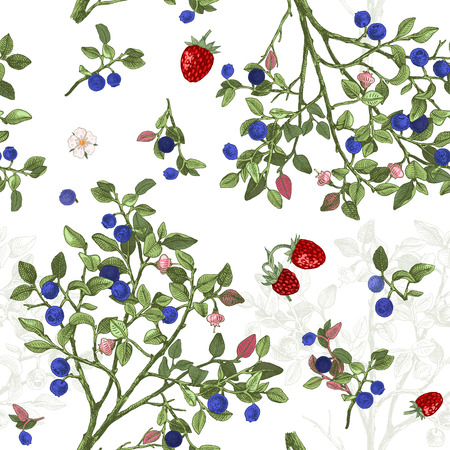 Pattrn sans couture avec des buissons de myrtille
