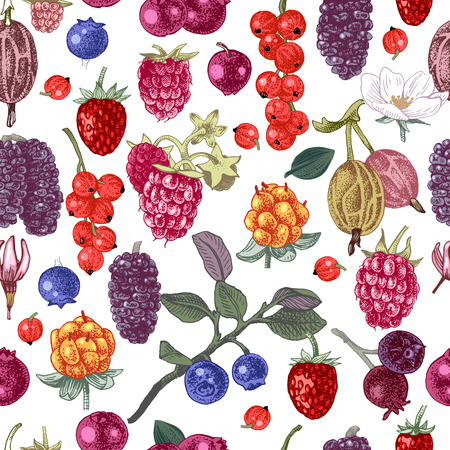 Bright seamless pattern with hand drawn berries. Vector illustration