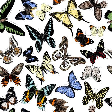 Seamless pattern with hand drawn butterflies. Vector illustration Stock Illustratie