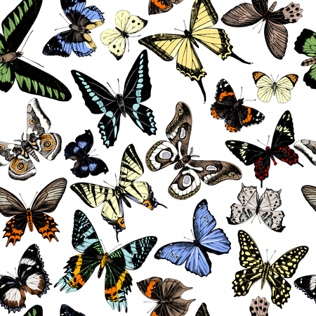 Seamless pattern with hand drawn butterflies. Vector illustration Illustration