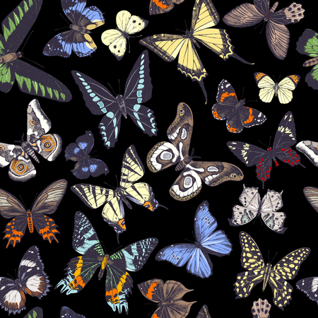 Seamless pattern with hand drawn butterflies on dark background. Vector illustration