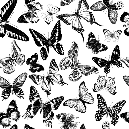 Monochrome seamless pattern with hand drawn butterflies. Vector illustration