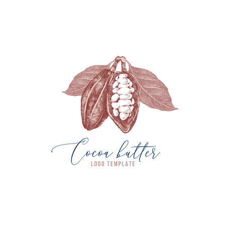 Cocoa butter with hand drawn cocoa beans Illustration