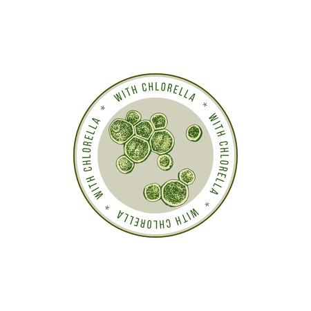 Emblème rond avec des algues chlorella dessinées à la main