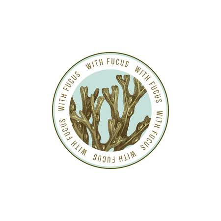 Round emblem with hand drawn Fucus algae. Vector illustration