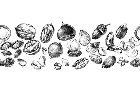 Seamless border with hand drawn edible nuts. Vector illustration