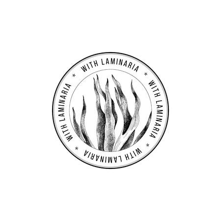 Round emblem with hand drawn laminaria digitata seaweed. Vector illustration Illusztráció