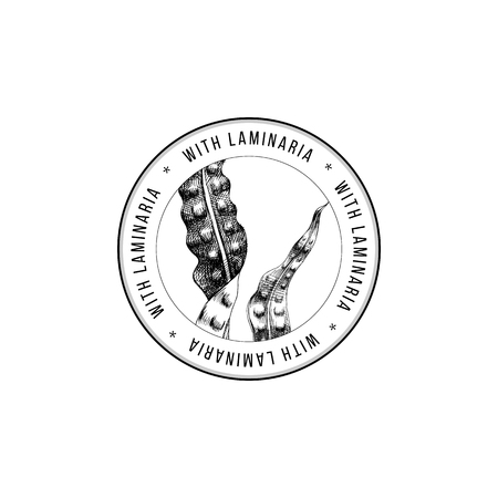 Round emblem with hand drawn laminaria algae. Vector illustration