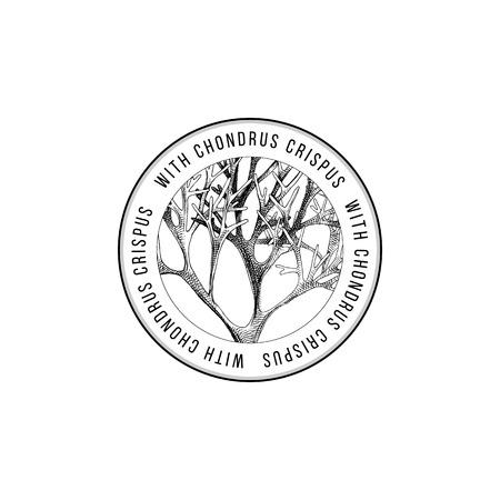 Emblème rond avec des algues chondrus crispus dessinées à la main. Illustration vectorielle