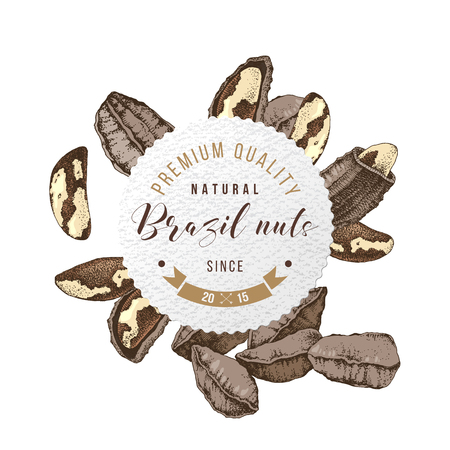 Round paper label with type design and hand drawn brazil nuts