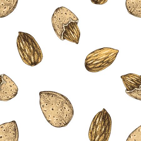 Seamless pattern with hand drawn almonds Illusztráció