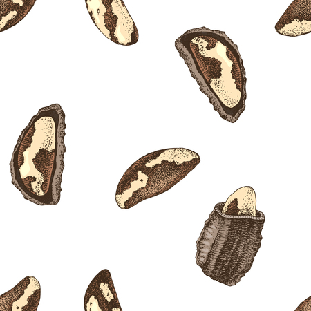 Seamless ornament with hand drawn brazil nuts Illustration