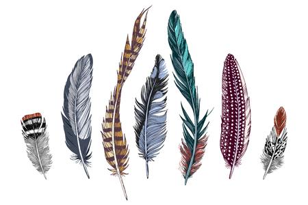 7 handgezeichnete bunte Federn auf weißem Hintergrund. Vektor-Illustration