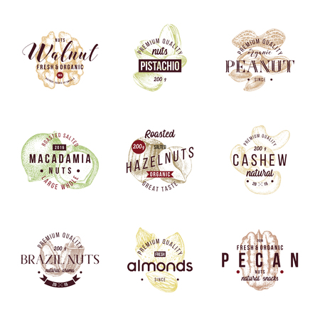 Type designs with different hand drawn edible nuts. 9 unique vector designs in 1 set