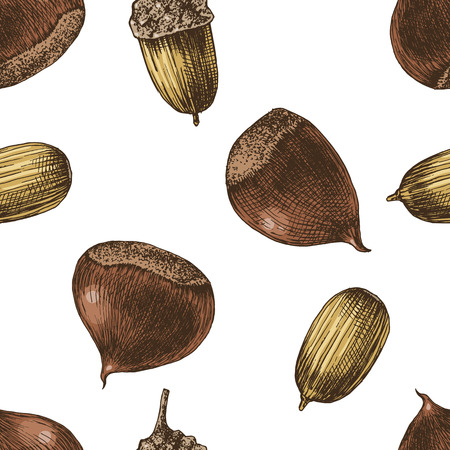 Seamless pattern with hand drawn chestnuts and acorns Иллюстрация