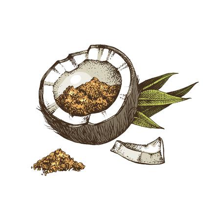 La moitié de la noix de coco pleine de sucre de coco