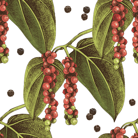 Seamless pattern with hand drawn pepper plant. Colorful vector illustration in retro style Çizim
