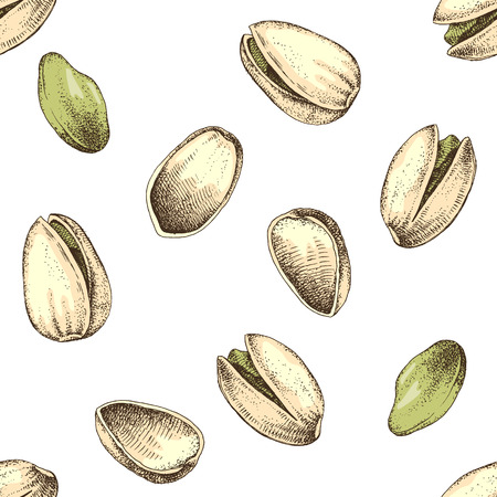 Seamless pattern with hand drawn pistachio nuts