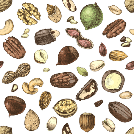 Seamless pattern with hand drawn nuts. Vector illustration