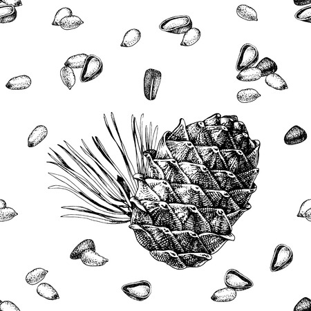Seamless pattern with hand drawn cedar bump and pine nuts
