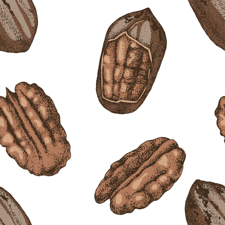 Seamless pattern with hand drawn pecan nuts Stock fotó - 124158223