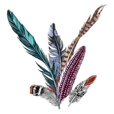 Colorful hand drawn feathers on white