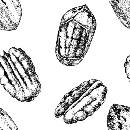 Seamless pattern with hand drawn pecan nuts Archivio Fotografico - 124158238