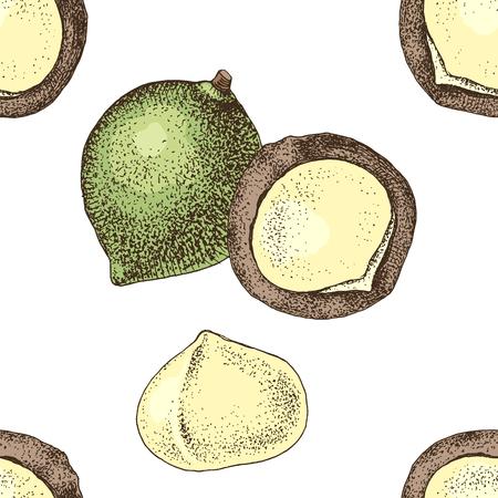 Nahtloses Muster mit handgezeichneten Macadamianüssen.