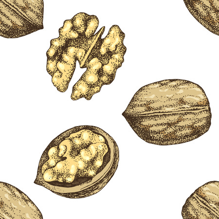 Seamless pattern with hand drawn walnut nuts