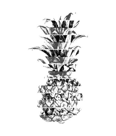 Modern illustration of pineapple