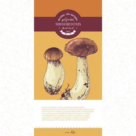 Package design for dried sliced porcini mushrooms. Vector illustration