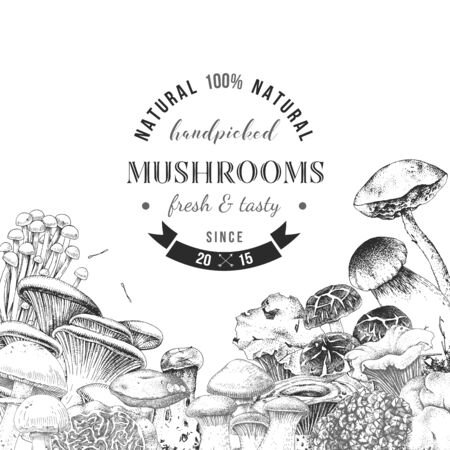 Background with hand drawn edible mushrooms Illustration