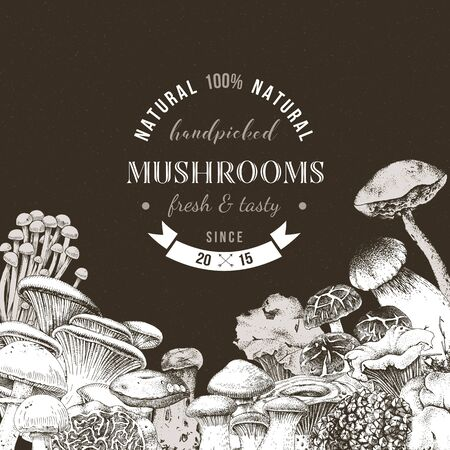 Monochrome background with hand drawn edible mushrooms and place for text. Vector illustration Stock Illustratie