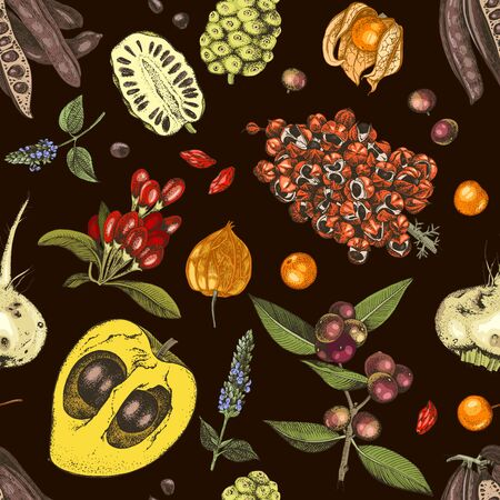 Seamless pattern with hand drawn superfood plants on dark background. Design template. Great for package design