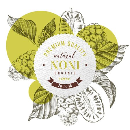 Round emblem with type design over hand drawn noni branches. Superfood. Vector illustration