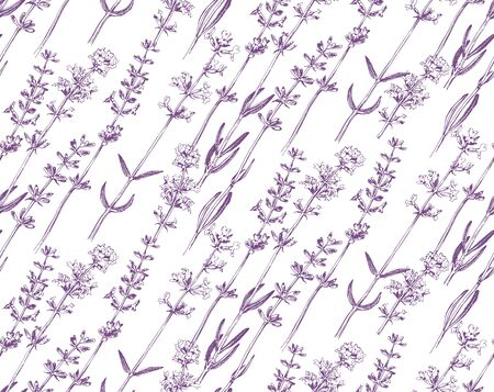 Seamless pattern with hand drawn lavender flowers