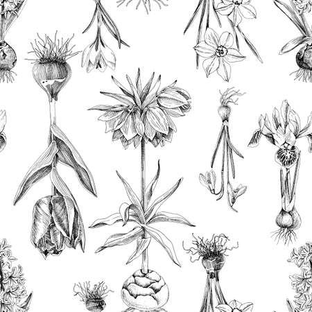 Seamless pattern of hand drawn bulbous flowers
