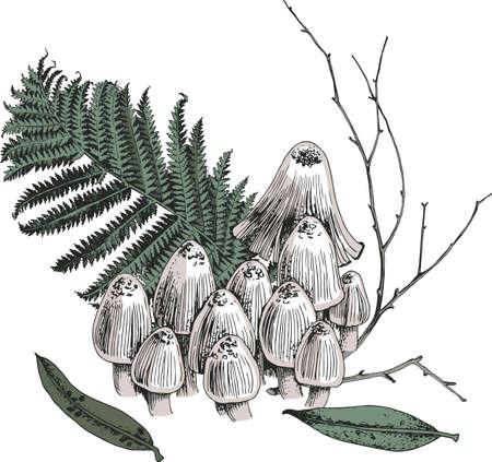 Hallucinogenic mushrooms isolated on background Stock Illustratie