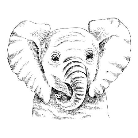 Hand drawn portrait of funny indian elephant baby