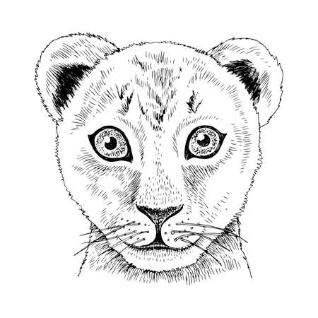 Hand drawn portrait of funny Lion baby
