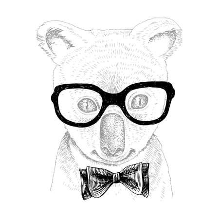 Hand drawn portrait of Koala baby with accessories Stock Illustratie