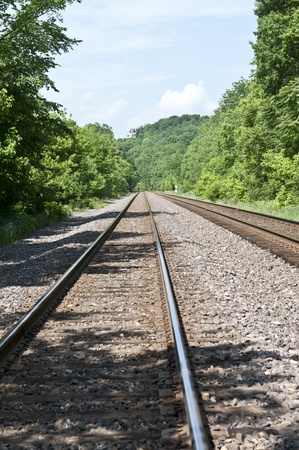 Two sets of train tracks run through lush green forest Stock Photo - 13534174