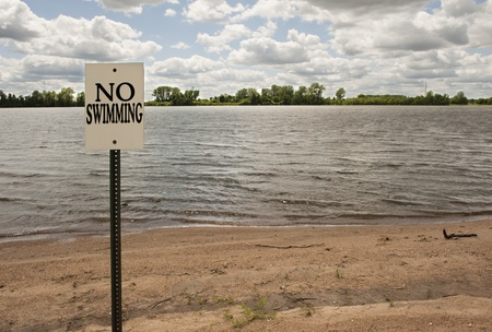 no swimming sign: No swimming sign posted on a lake shore