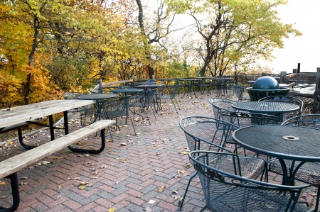 A brick patio littered with leaves and surrounded by trees in the fall