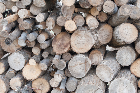 Logs of various sizes cut and stacked, ready to be split for firewood