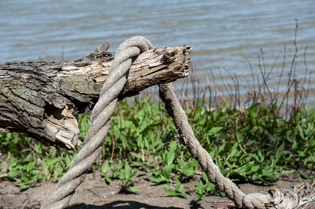 Close up of a thick abandoned rope haning over driftwood on riverbank Stock Photo
