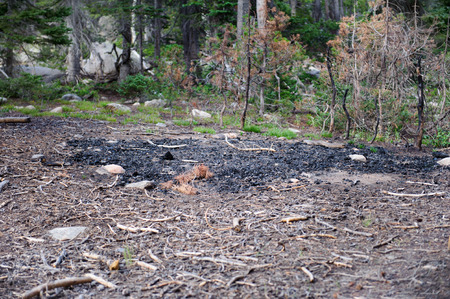 Selective focus on a large circle of ashes on a forest floor near dead trees