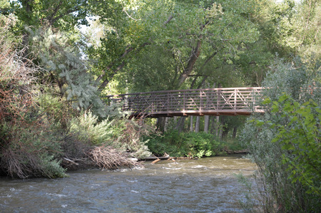 Walking Bridge crossing over a fast-moving creek, surrounded by trees and brush